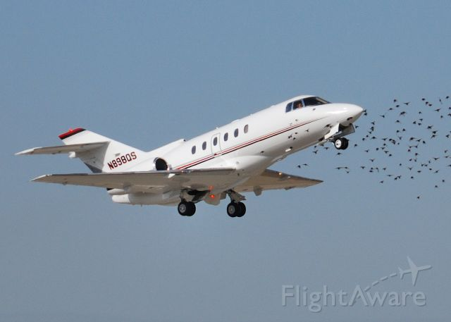 Raytheon Hawker 800 (N898QS) - Departing RWY 14 at KPIT.  Birds flocking in the airport vicinity.