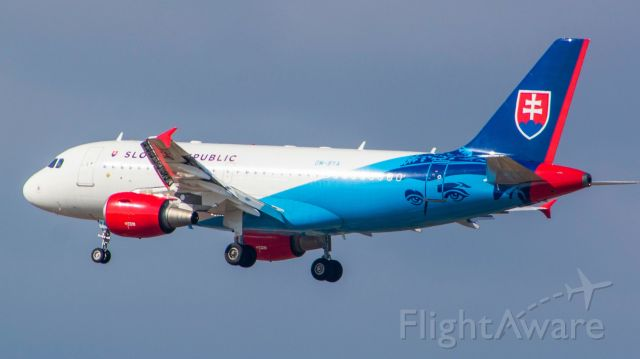 Airbus A319 (OM-BYA) - this livery is so amazing! it was fun to catch it
