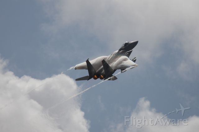 McDonnell Douglas F-15 Eagle — - F-15 flyby at Wings Over Houston 2017 (#WOH)