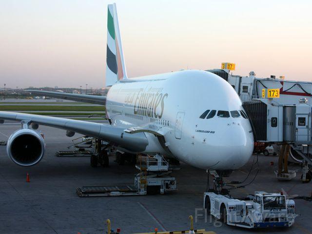 Airbus A380-800 (A6-EDM)