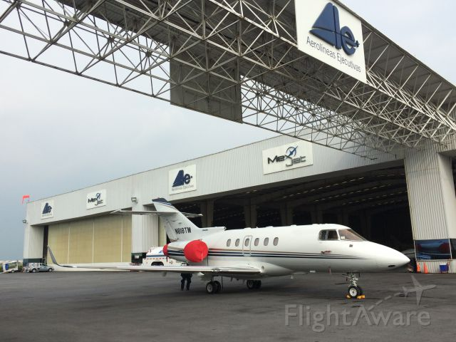 Raytheon Hawker 800 (N818TM) - Photo taken by Steven Nice at Toluca< Mexico July of 2015.