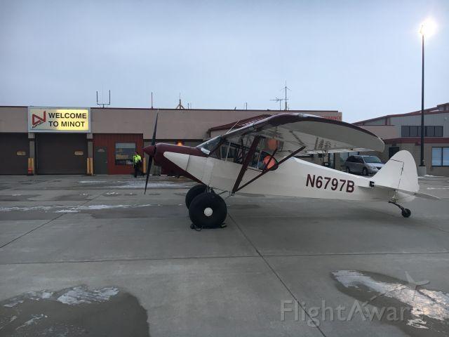 Piper L-21 Super Cub (N6797B)