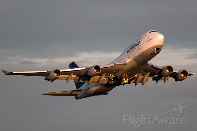 Boeing 747-400 (D-ABTL) - yellow evening sun