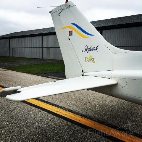 Cessna Skyhawk (DCM6499)