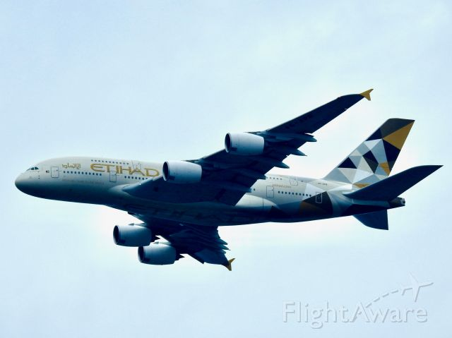 Airbus A380-800 (A6-APB) - ETD101 AUH-JFK