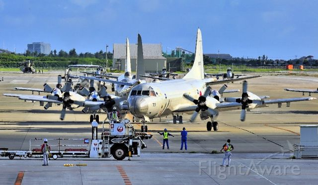 Lockheed P-3 Orion (N5077) - Parking with brothers and sisters