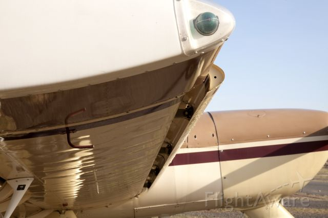 N333RA — - Automatic, spring loaded slats reduce the stall speed and make the aircraft very docile.
