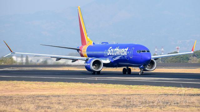 Boeing 737 MAX 8 (N8713M)