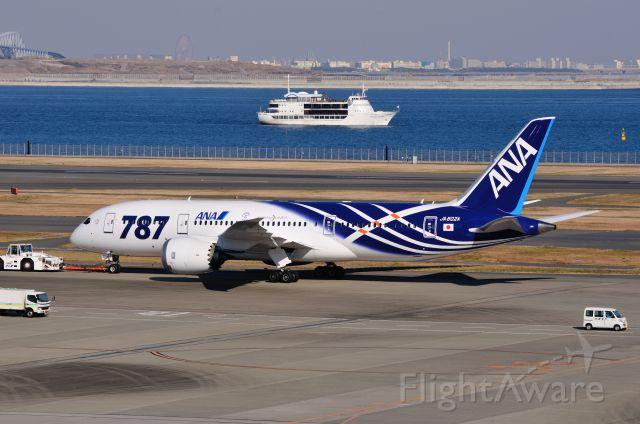 "Boeing 787-8 (JA802A) - 2011/12/24<br /><a rel=""nofollow"" href=""http://amigoplane.blog.fc2.com/"">http://amigoplane.blog.fc2.com/</a>"
