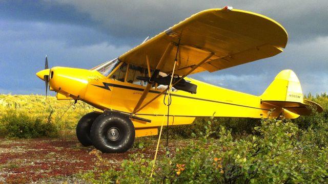 Piper NE Cub (N985W)