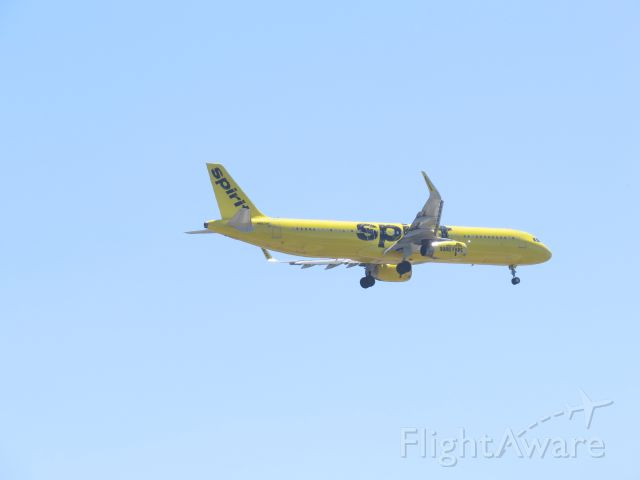 """Airbus A321 (N667NK) - Landing in San Diego via Balboa Park. Spirits livery suggests calling this jet """"Banana Bus""""."""