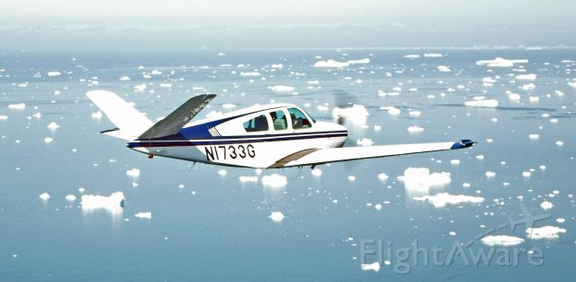 Beechcraft 35 Bonanza (N1733G)