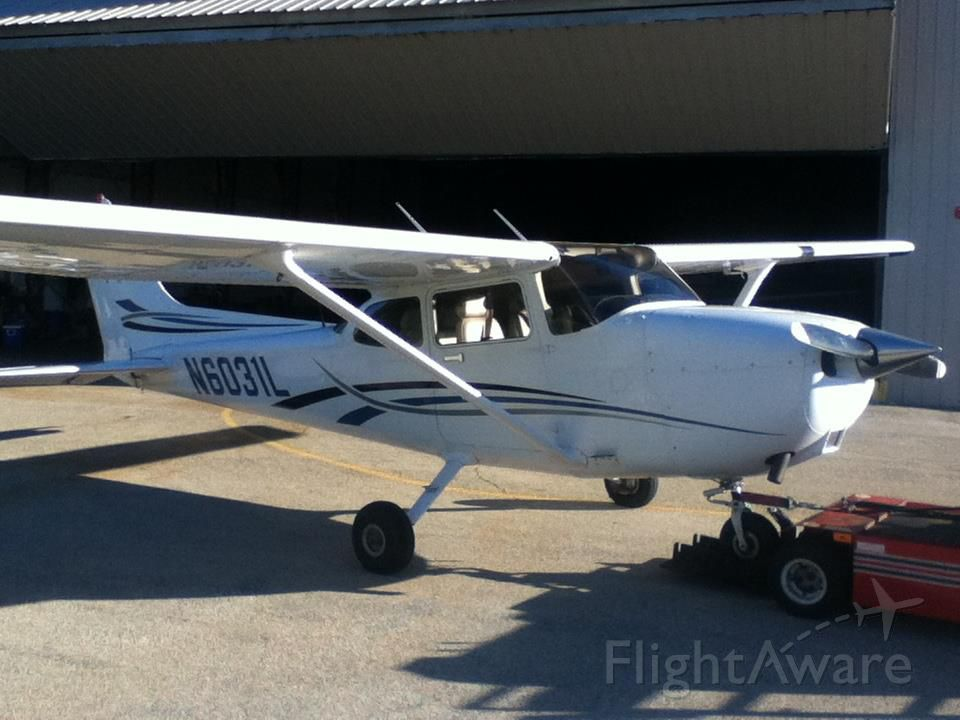 Cessna Skyhawk (N6031L) - Bug free and ready to fly.