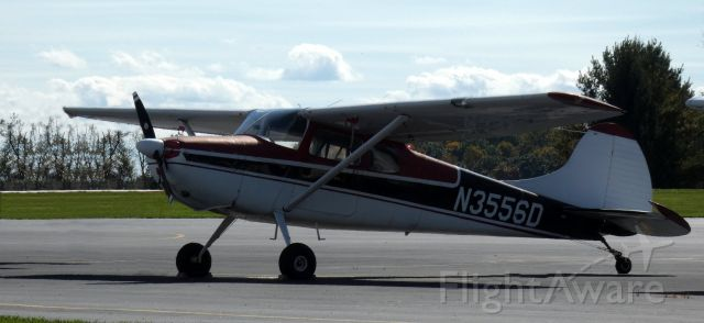 Cessna 170 (N3556D) - Catching some tarmac time is this 1956 Cessna 170B in the Autumn of 2020.