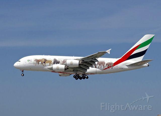 Airbus A380-800 (A6-EOM)