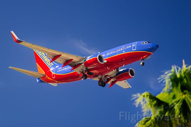 Boeing 737-700 (N960WN) - Welcome to Tampa...