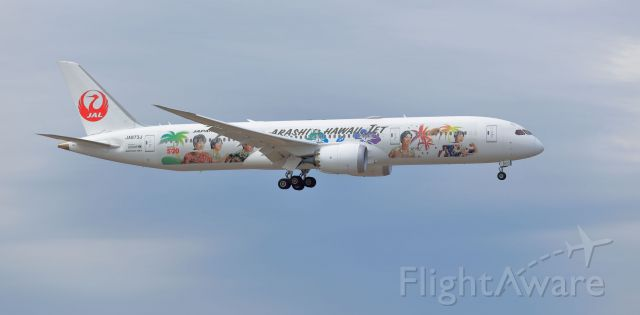 Boeing 787-9 Dreamliner (JA873J) - Japan Airlines (Arashi JAL-Hawaii Livery)