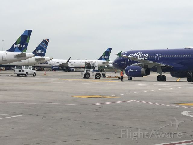 Airbus A320 — - Jetblue Gateway Select group got to go visit the ramp ops at JFK