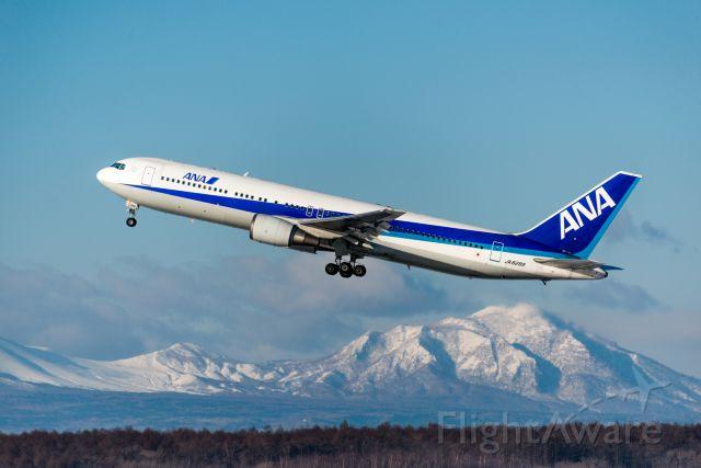 BOEING 767-300 (JA8289)