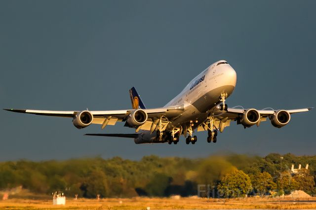 BOEING 747-8 (D-ABYU) - hot yellow evening sun after thunderstorm and heavy rain.2016-10-02