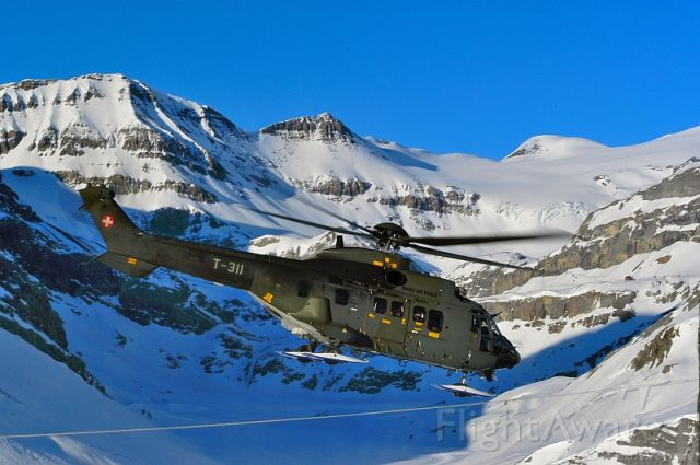 TUSAS Cougar (T311) - Hivernal support