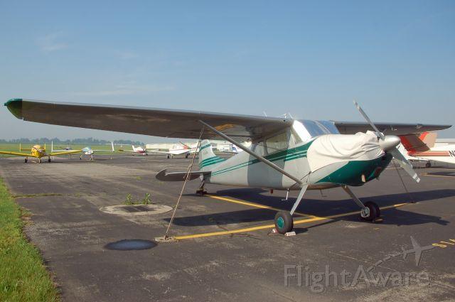 Cessna 170 (N8081A) - AOPA Fly-in 2008