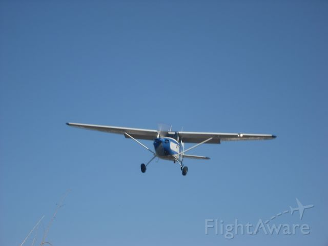 Cessna 170 (N2966D) - DOC OVER THE FENCE AT ROBINS AIR PARK 5A2
