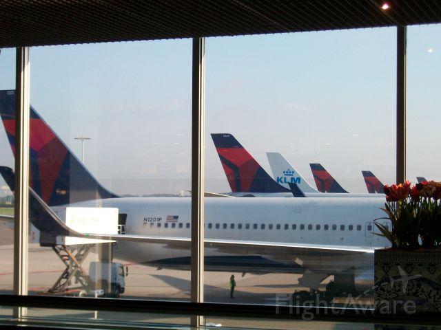 "BOEING 767-300 — - I call it...""The Odd Dutchman"""