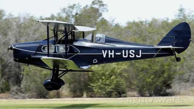 De Havilland Fox Moth (VH-USJ) - De Havilland DH 83 sn4058 Fox Moth VH-USJ annual fly-in YSEN 25102020