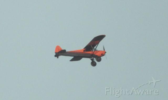 Piper L-21 Super Cub (N70CC)