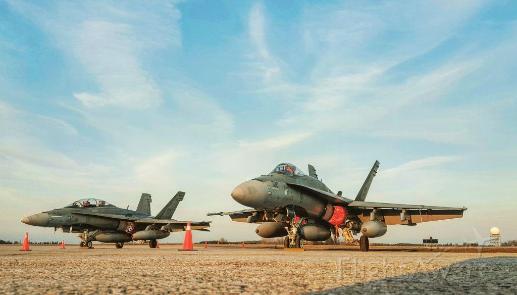 McDonnell Douglas FA-18 Hornet (18-8730) - A pair of CF-18 Hornets