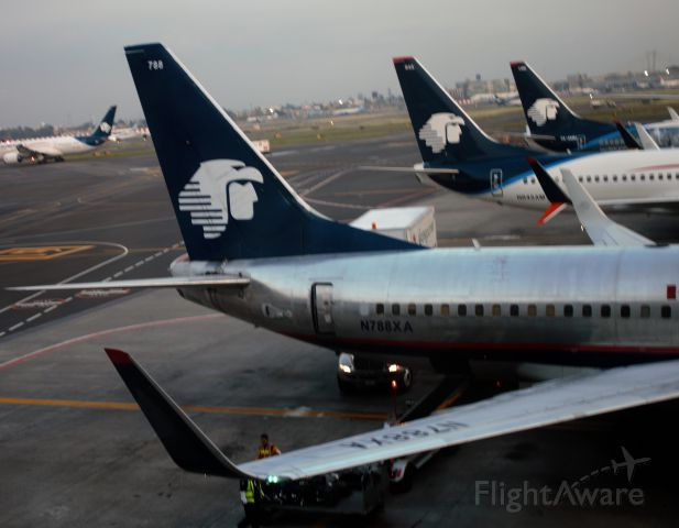 Boeing 737-700 (N788XA) - Three Aeromexico tails parked at the gate