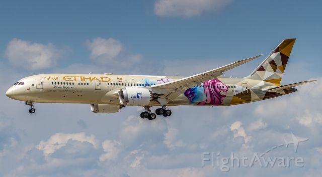 Boeing 787-9 Dreamliner (A6-BLR) - ADNOC's 'Choose Singapore' livery on this Etihad dreamer-9 on finals for runway 24R