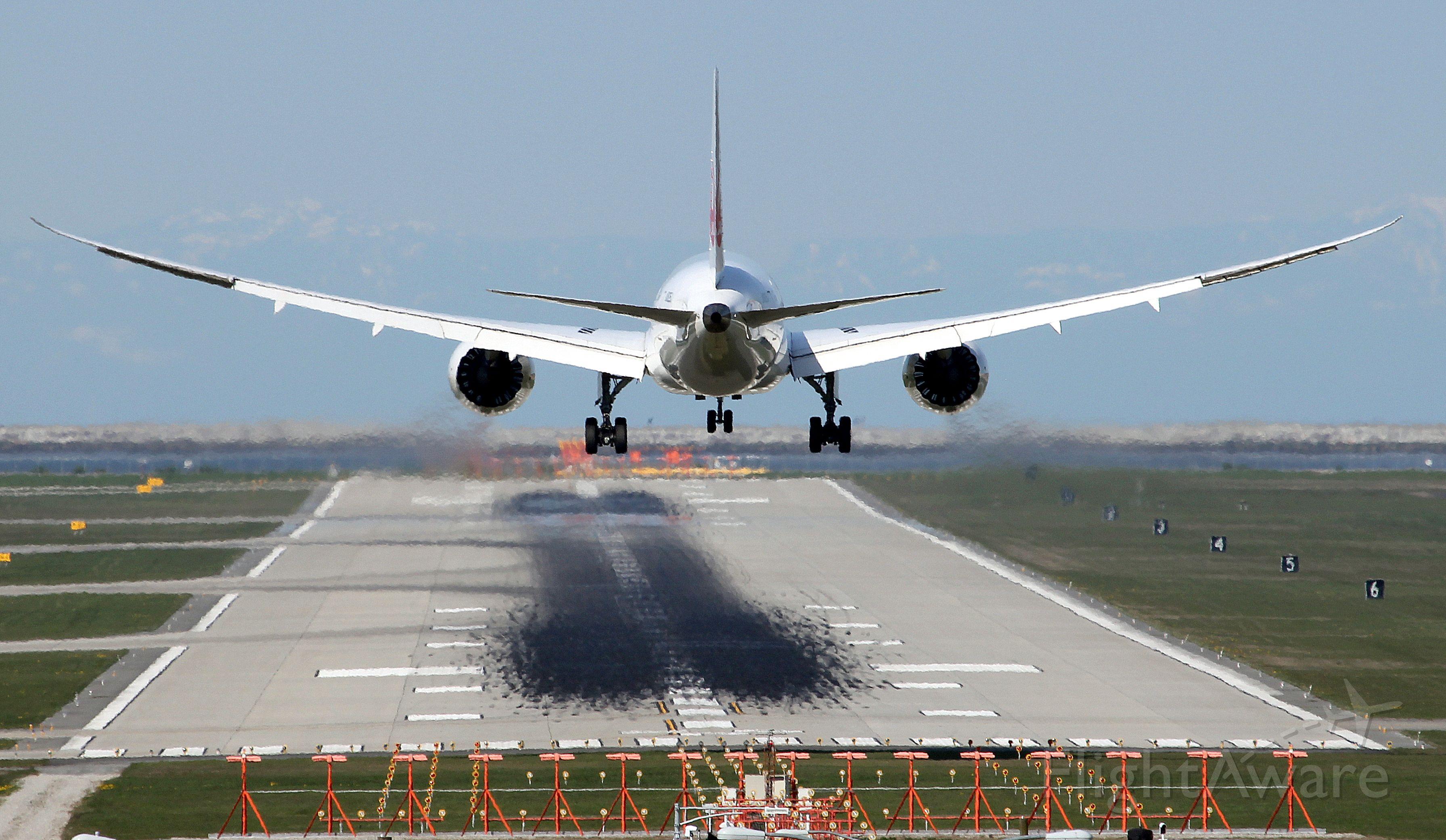 Boeing Dreamliner (Srs.8) (JA825J) - Another shot of JAL