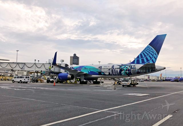 Boeing 757-200 (N14102) - New York/New Jersey Her Art Special Livery 10/02/19