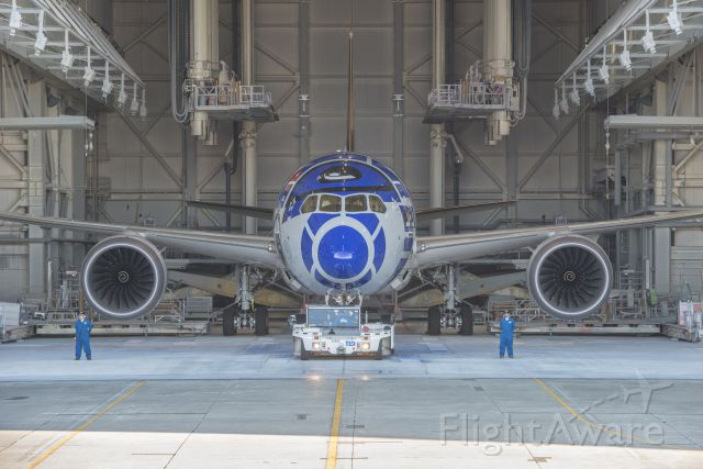 Boeing 787-8 (JA873A)