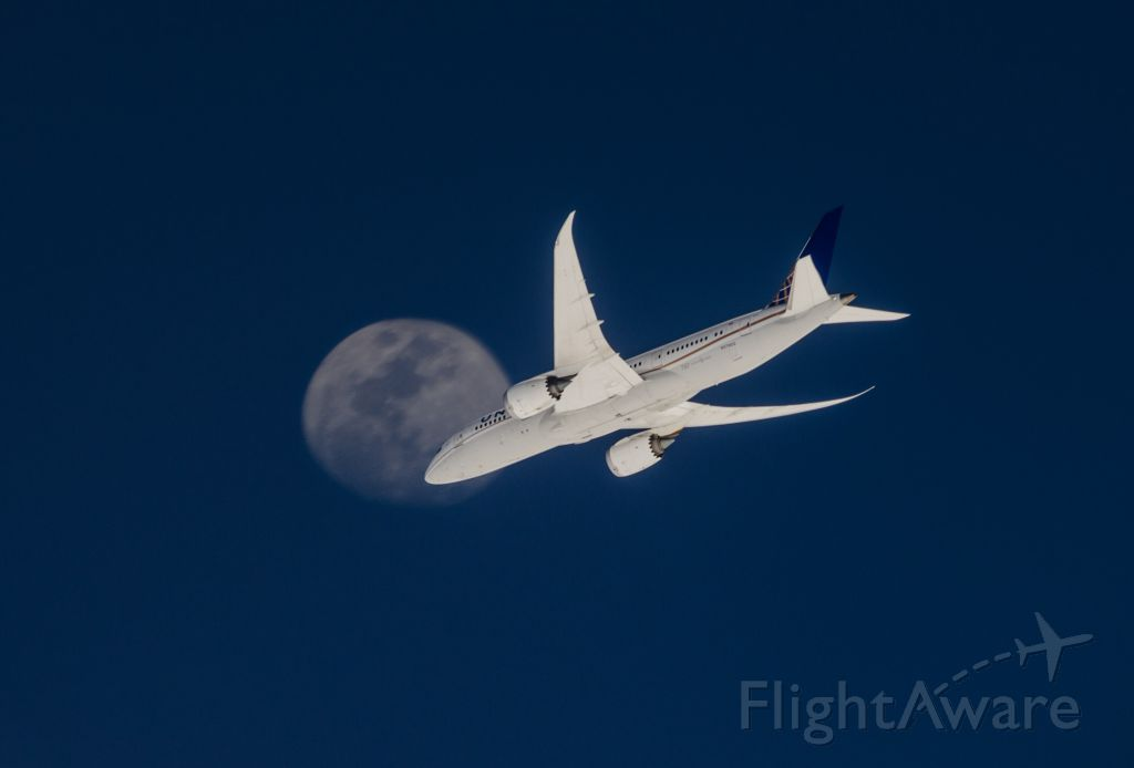 Boeing 787-8 — - Dreaming in real life