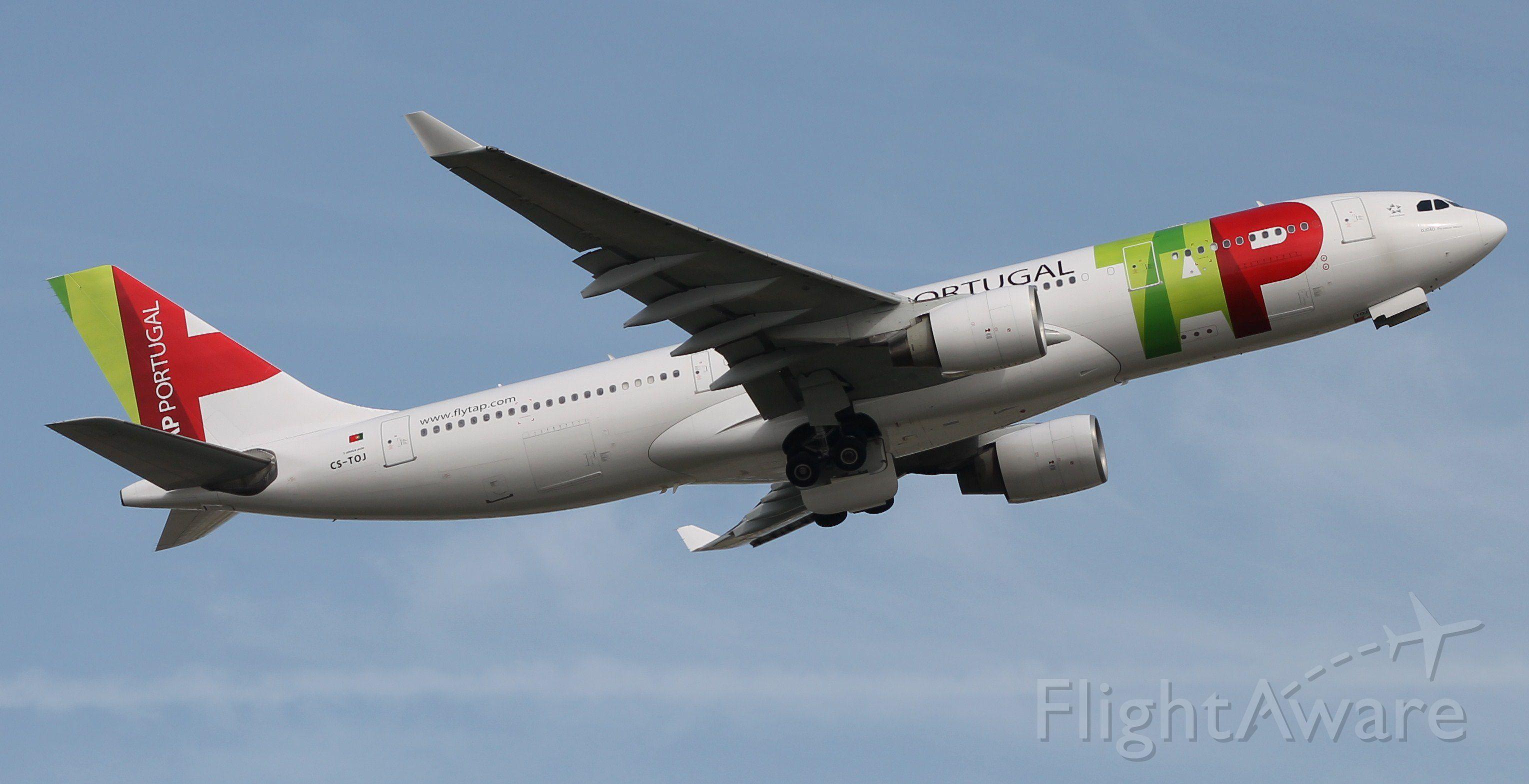 Airbus A330-300 (CS-TOJ) - Pedro Bronze