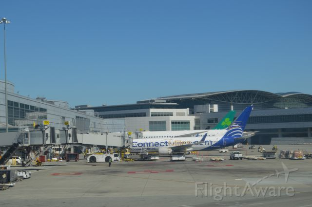Boeing 737-800 — - Copa Airlines Connect Miles livery at SFO with United 777-200 and Aer Lingus A330