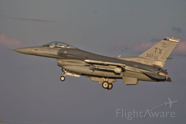 — — - F-16C with a flying bird