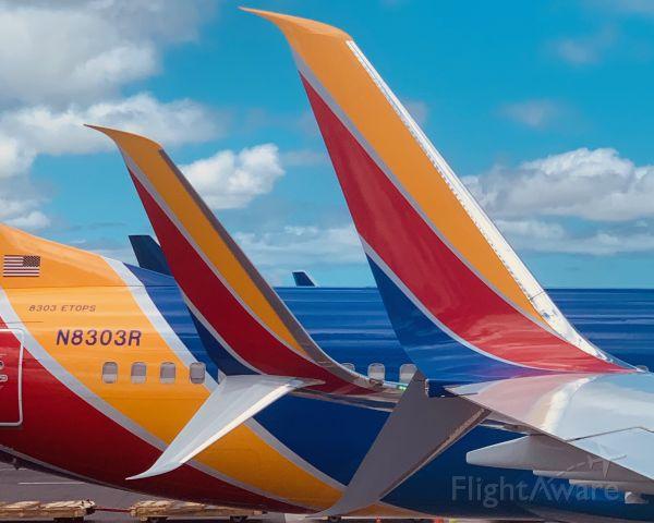 Boeing 737-800 (N8303R)