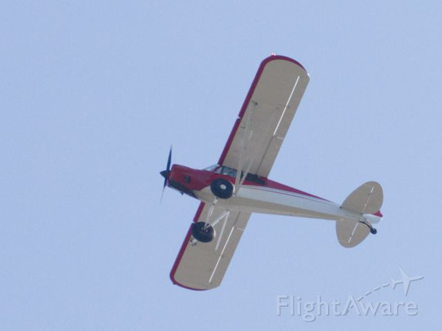 Piper L-21 Super Cub (N311BL) - Flying over my house in 78757
