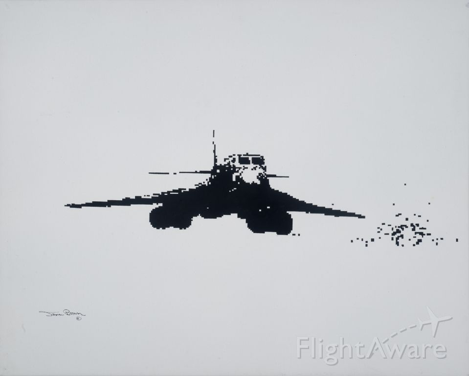 — — - Oil painting by member for friend who who flew this in combat.