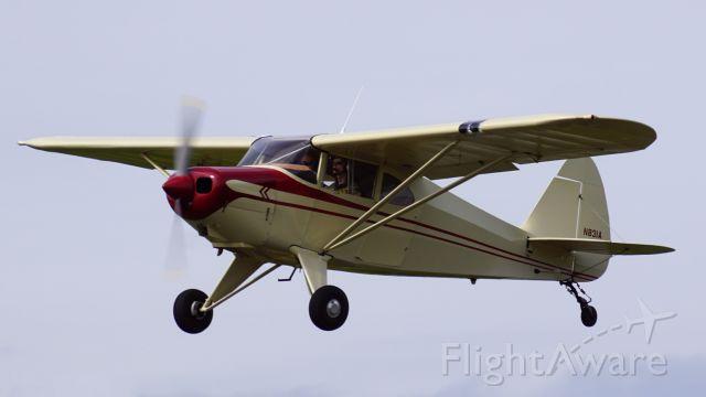 Piper PA-22 Tri-Pacer (N831A) - Beim Start.