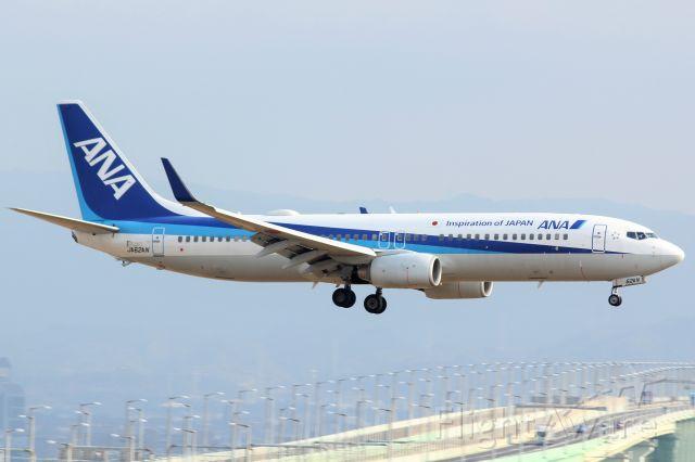 Boeing 737-800 (JA62AN)