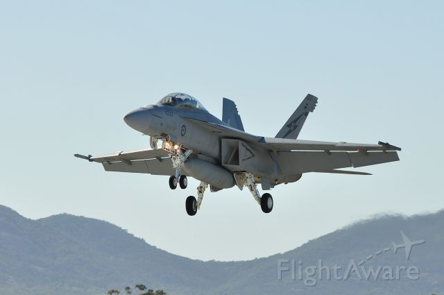McDonnell Douglas FA-18 Hornet (A44203)