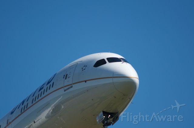 Boeing Dreamliner (Srs.8) (N27958) - Arriving runway 27 KIAH, its shadow in reflection.