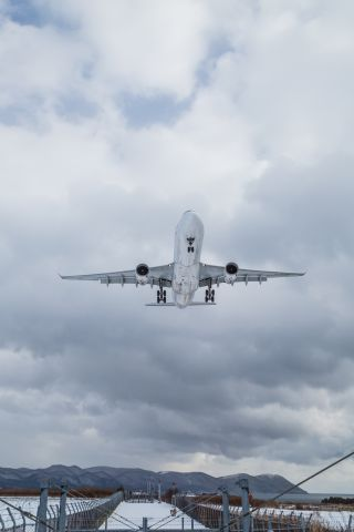 Airbus A330-300 (B-22101) - Trans Asia / Airbus A330-343Xbr /Dec.06.2015 Hakodate Airport [HKD/RJCH] JAPAN
