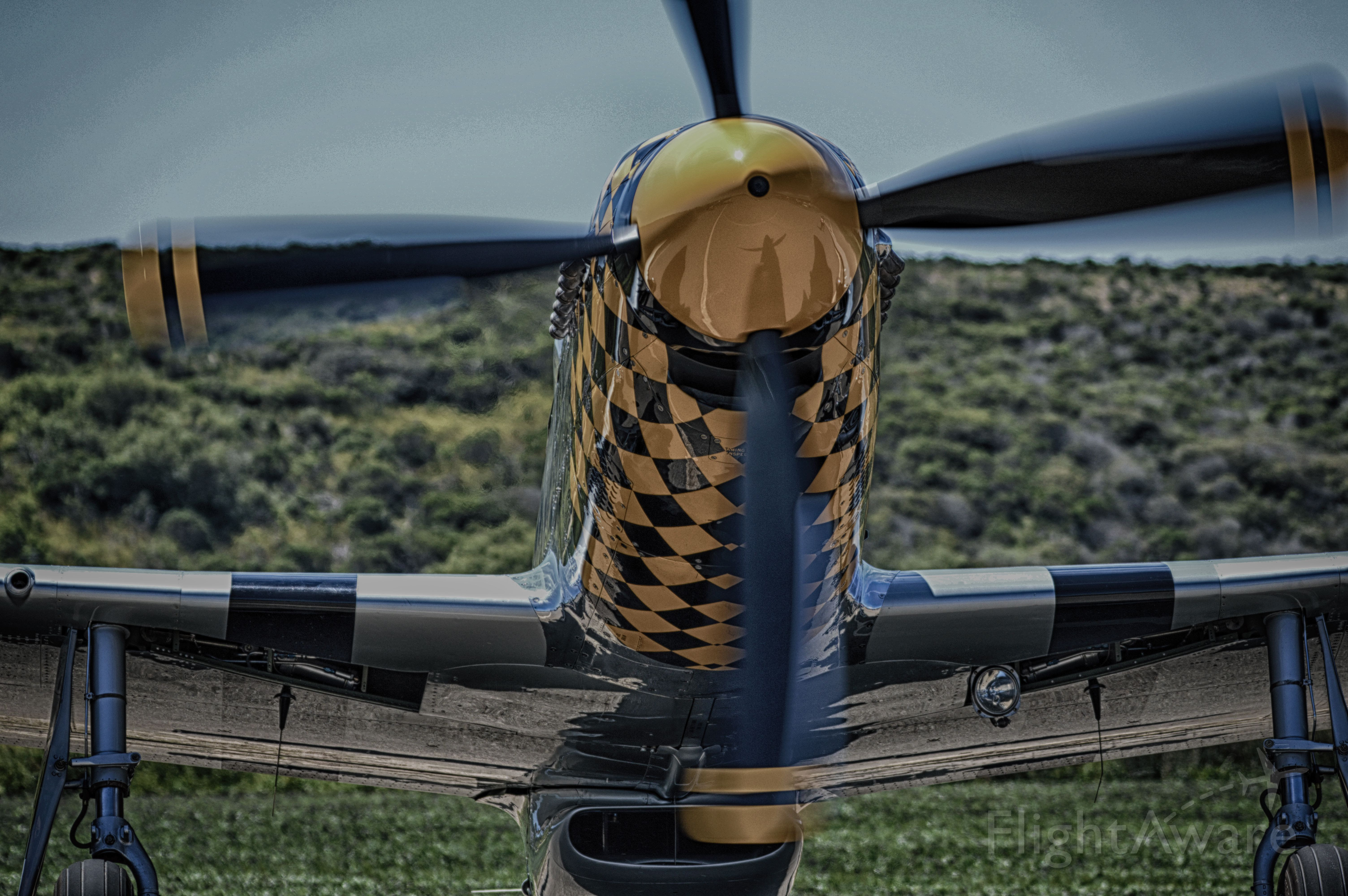 North American P-51 Mustang (N451EA) - Eddie Andrieni