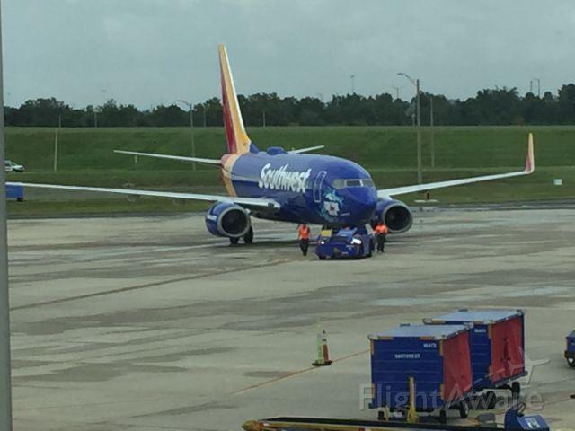 Boeing 737-700 — - Shark Week